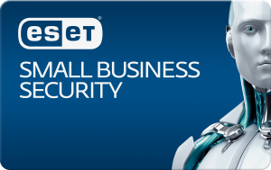 SmallBusinessSecurity
